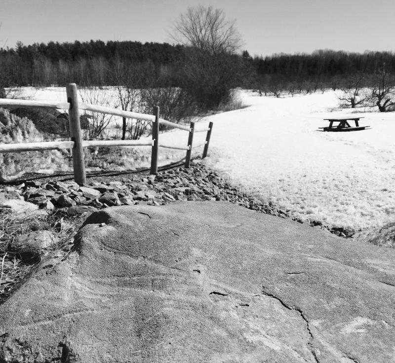 Large rock, picnic table and apple orchard in winter scene in central maine royalty free stock images