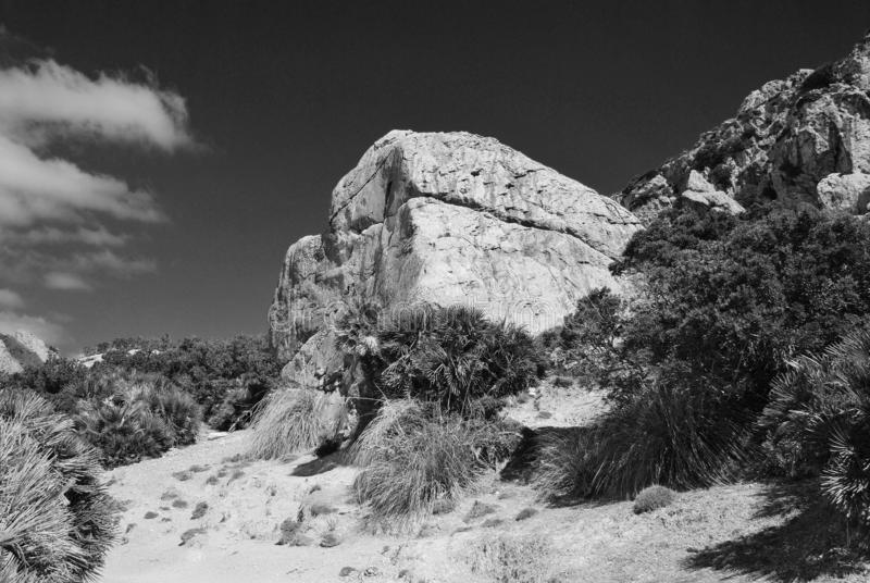 Boquer valley, Majorca royalty free stock images