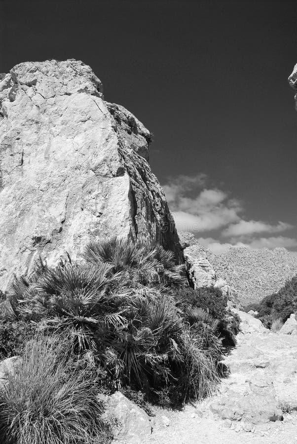 Boquer valley rocks, Majorca island royalty free stock image
