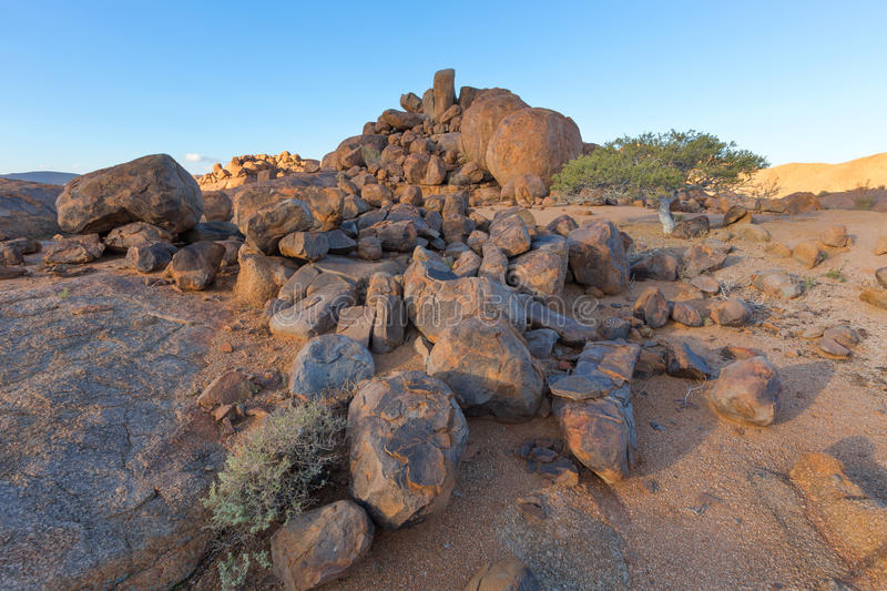 Large rocks and a small tree royalty free stock photography