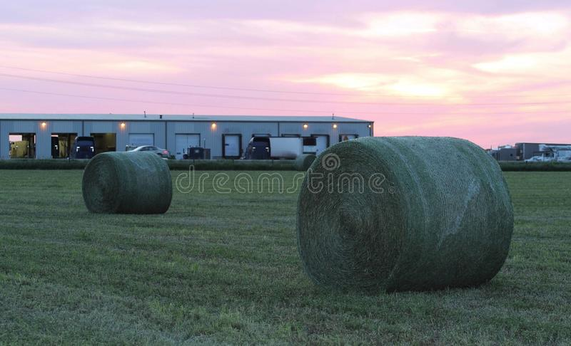 Download Large Round Green Hay Bales At Sunset Stock Image - Image of farming, green: 24844585