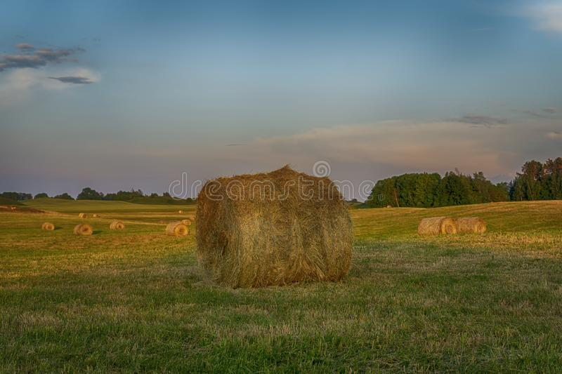 Large round hay bale on a farm field at sunset royalty free stock images
