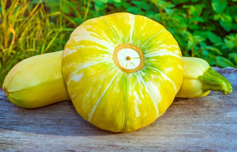 Large Round Yellow Pumpkin, Vegetable Garden Lies On An ...