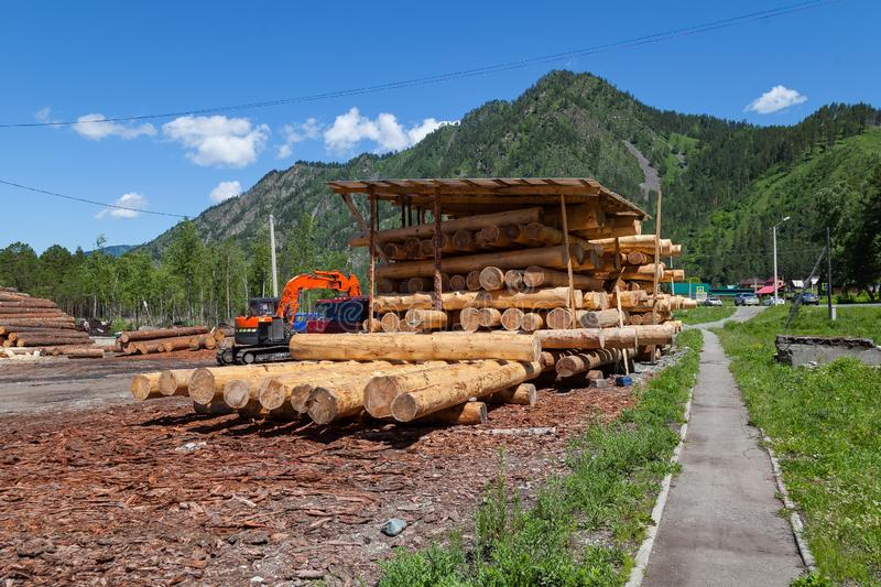 Large sawn round pine trees are laid in a pile for preparation of the production of building materials and the construction of stock images