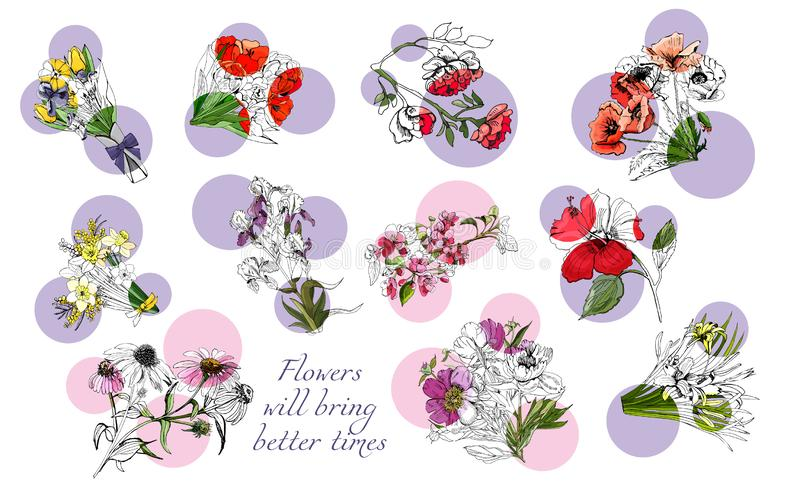Large set with monochrome and color different flowers. Large set with monochrome and color different flowers and pink and lilac circles. Hand drawn ink and vector illustration