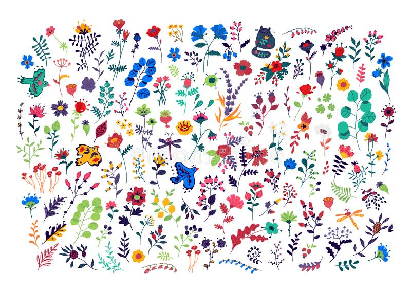 Large set of pattern of flowers. Vector. Decorative floral elements for a flower shop. Carpet from plants. Botany and floristry. O. Rnament for fabric. Summer vector illustration