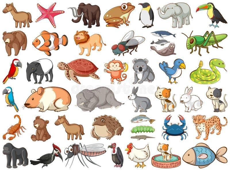 land animals clip art - Clip Art Library