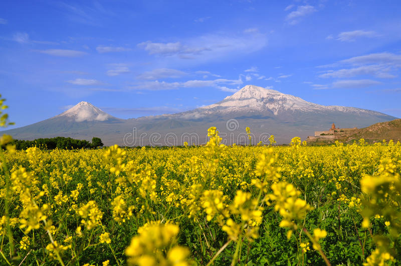 Large and small Ararat in Armenia royalty free stock images