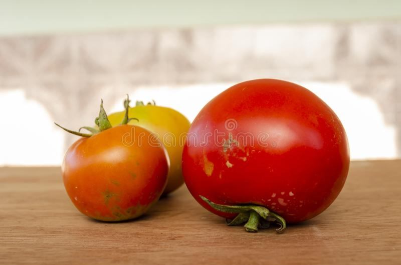 Large And Small Tomatoes Ripen At Different Stages. Close-up side view of tomatoes on a wooden table. The tomatoes in front are a large red ripe tomato and royalty free stock image