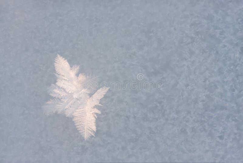 Large snow crystal closeup stock photos