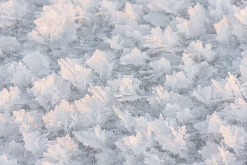 Large snow crystals closeup royalty free stock photos