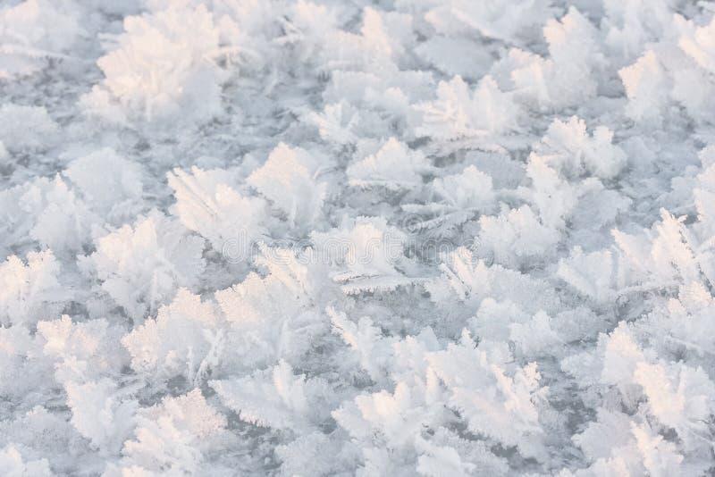 Large snow crystals closeup royalty free stock image