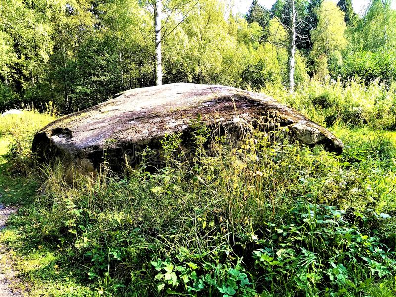 Huge glacial boulder located in the forest stock photo