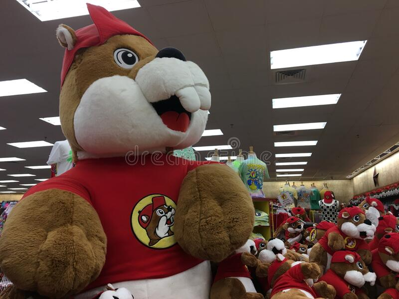 Large Plush Buc-ee Beaver Doll in Buc-ee`s Convenience Store royalty free stock image