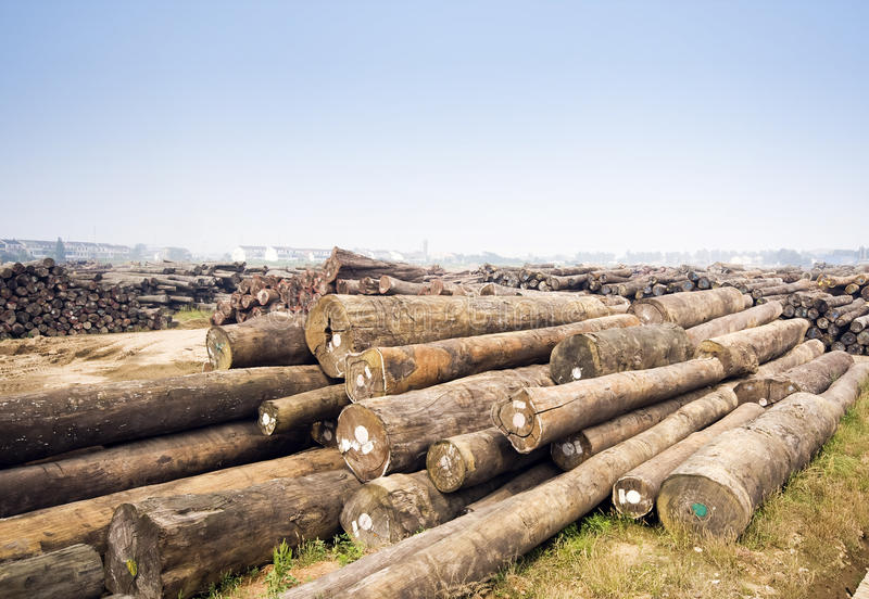Large Timber Mill Stock Images