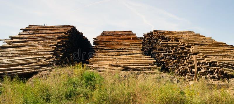 Large Timber Wood Log Lumber Processing Plant Logging Industry stock image
