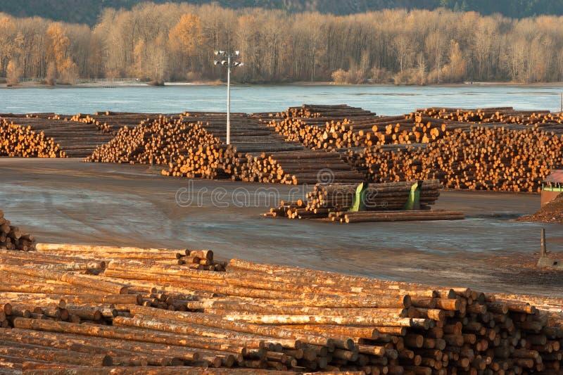 Large Timber Wood Log Lumber Processing Plant Riverside Columbia stock photos