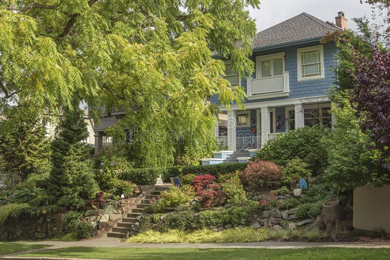 Large tree and house residential area Seattle WA royalty free stock photos