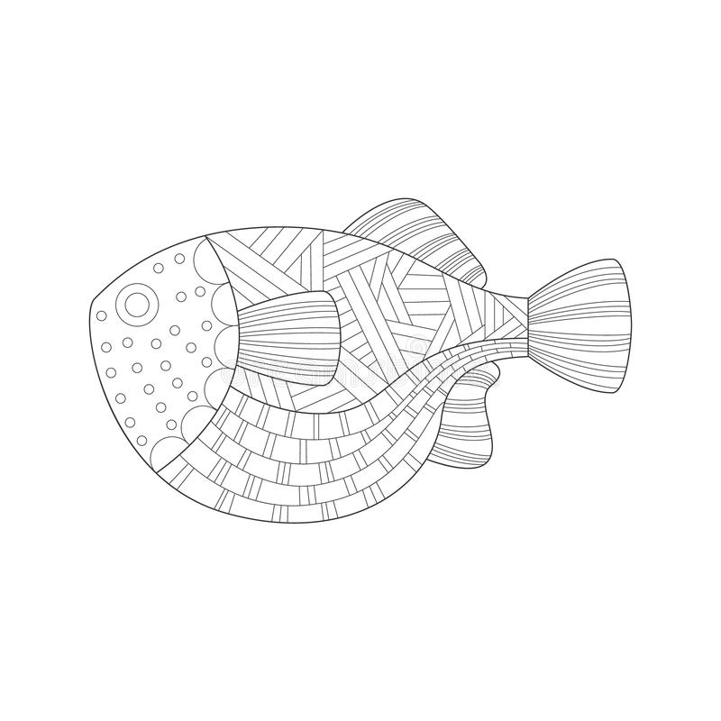 Large Tropical Fish Sea Underwater Nature Adult Black And White Zentangle Coloring Book Illustration vector illustration