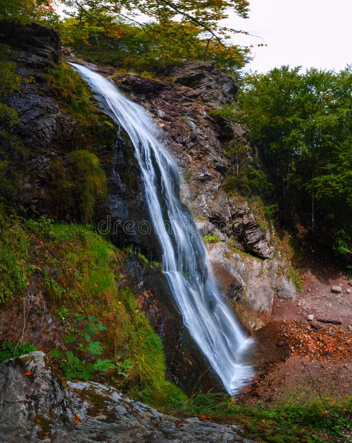 Large waterfall in the forest stock image