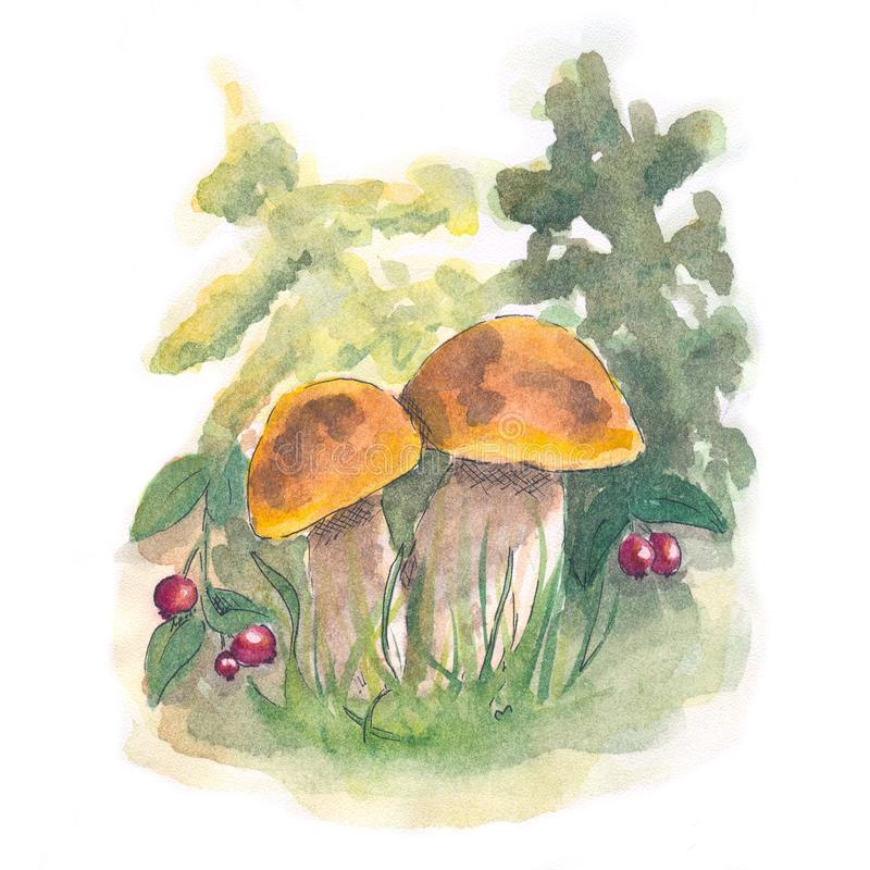 A large white watercolor mushroom in a fairy forest royalty free stock image