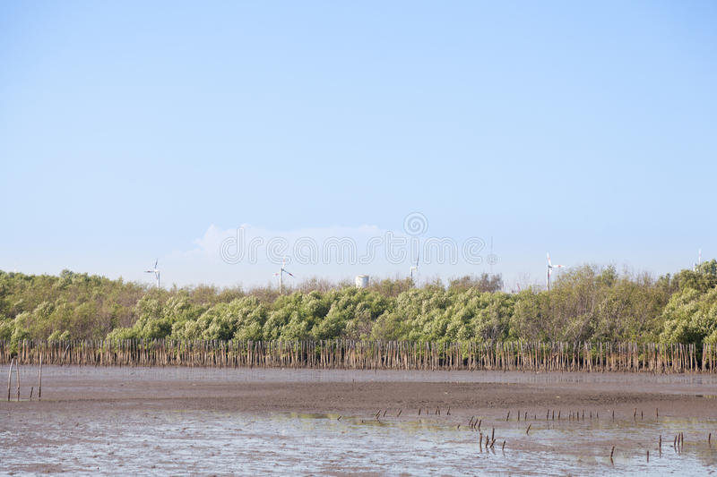Large Wind Turbines. The settlement is close to the mangrove forest industries royalty free stock image