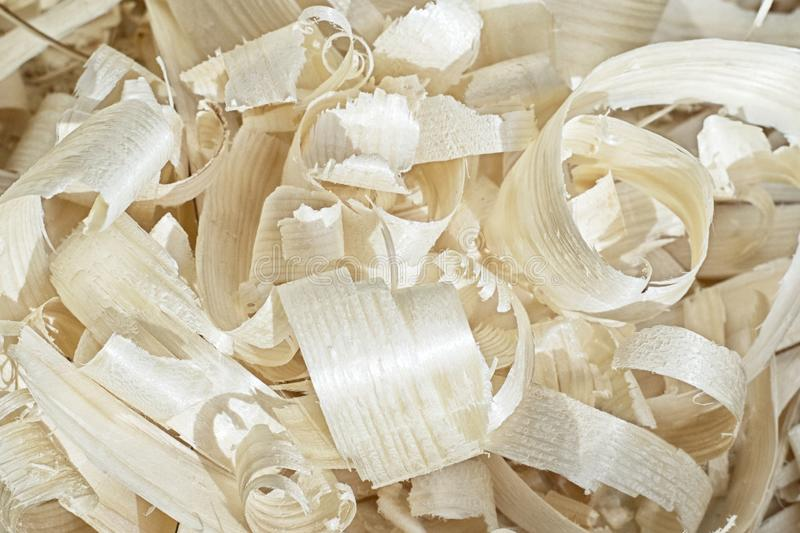 Large wood chips under the sun royalty free stock photo