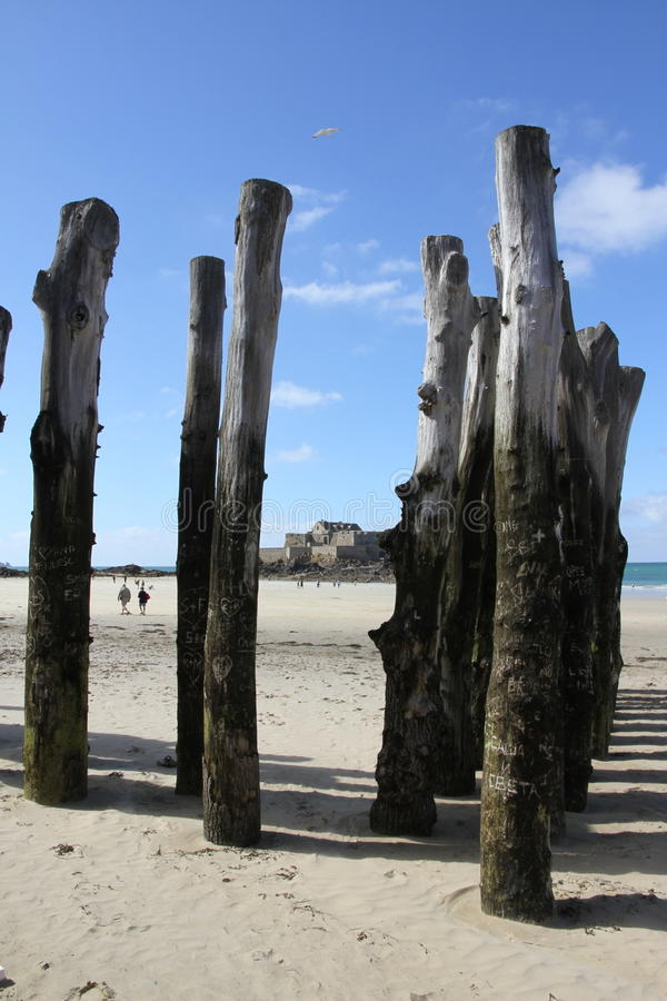 Large wooden stakes in the beach at St Malo. Behind is Grand Bé is a tidal island near Saint-Malo, France. At low tide with a blue sky stock image