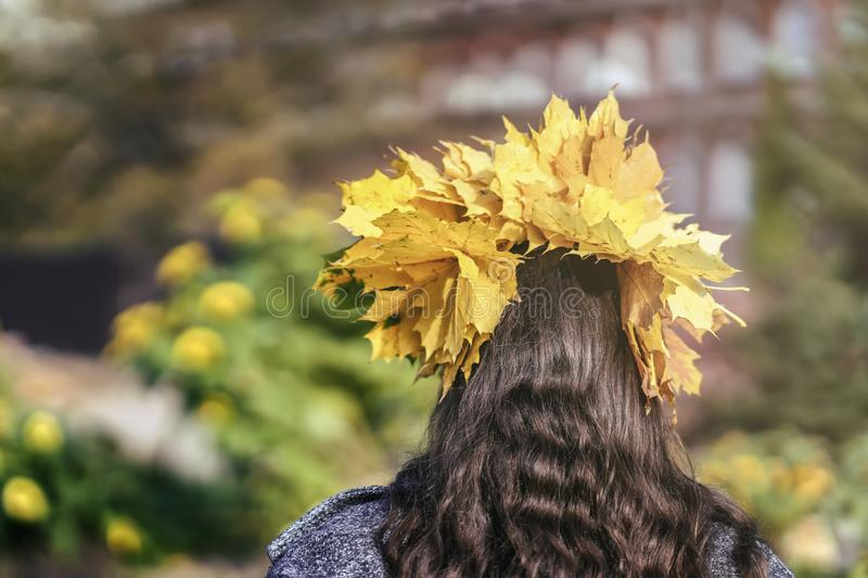 Large wreath of autumn yellow leaves on the head of an unrecognizable girl with long brown hair back to us. Natural stock photo