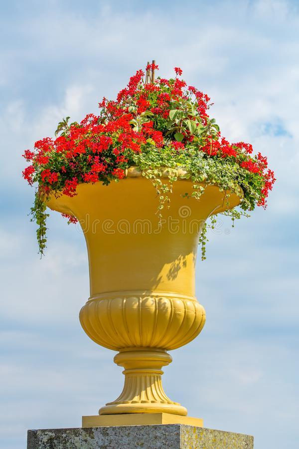 Large yellow ornate flowerpot with flowers. Large yellow decorative flowerpot with flowers and sky royalty free stock photography