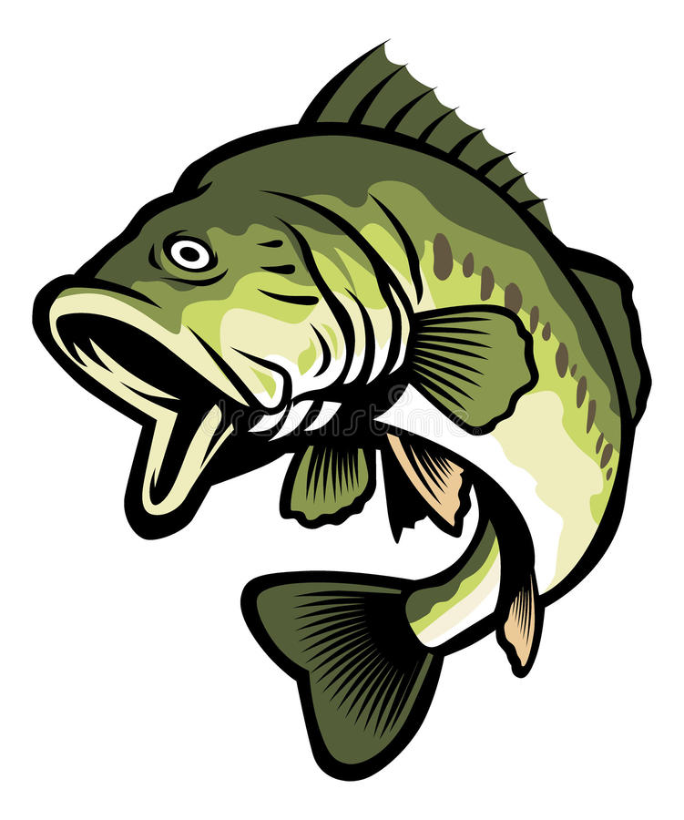 largemouth bass stock vector illustration of bait stream 35695488 rh dreamstime com Largemouth Bass Drawings Easy Bass Artwork