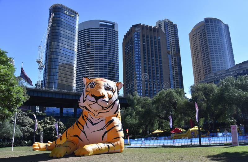 Larger than life lanterns in the shape of Tiger. Chinese zodiac animals at Circular Quay. Sydney, Australia - Feb 7, 2019. Larger than life lanterns in the shape stock photography