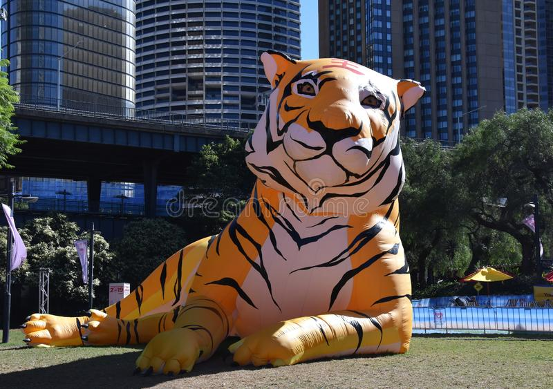 Larger than life lanterns in the shape of Tiger. Chinese zodiac animals at Circular Quay. Sydney, Australia - Feb 7, 2019. Larger than life lanterns in the shape stock photo