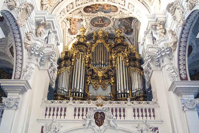 The largest organ in the world stock photography