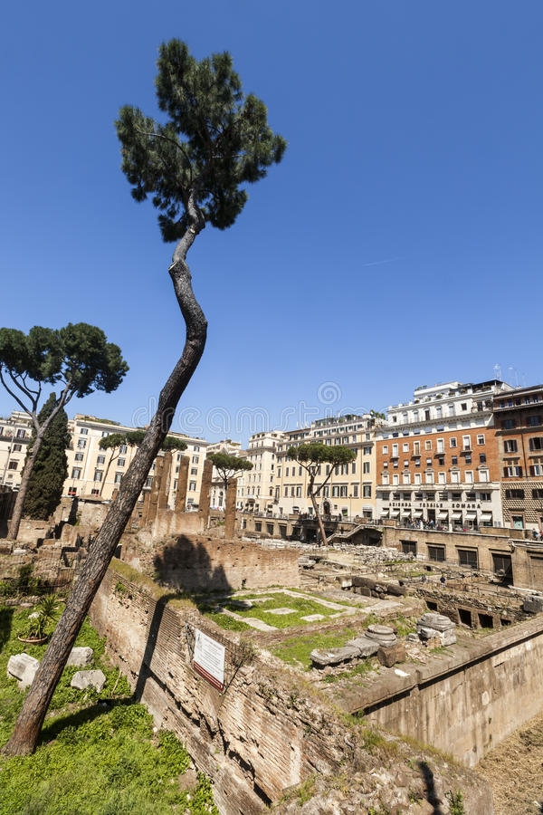 Largo di Torre Argentina fyrkant i Rome italy royaltyfri foto