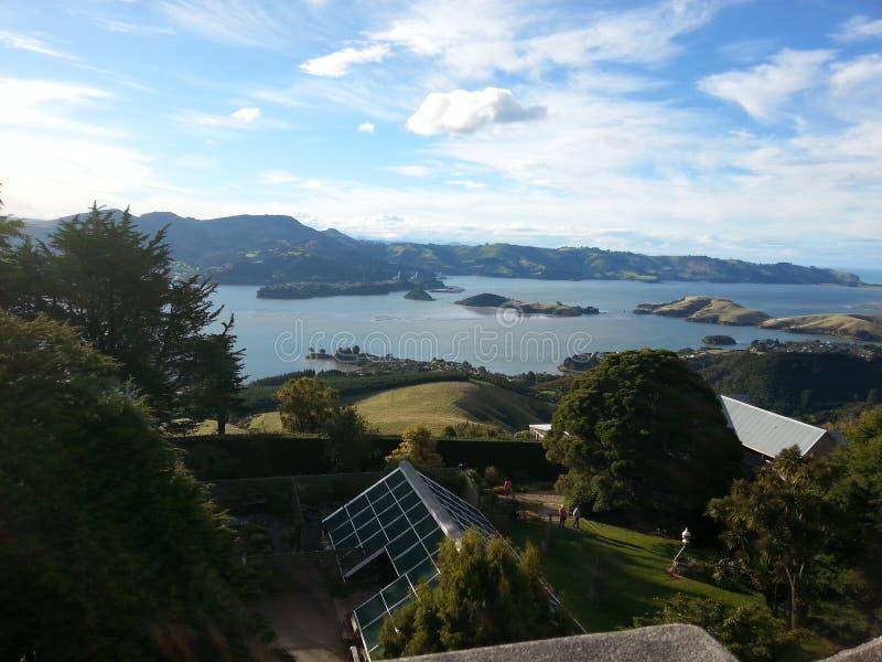 Larnach slott, Dunedin, Nya Zeeland fotografering för bildbyråer