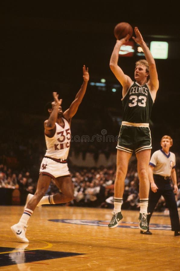 Larry Bird Boston Celtics imagen de archivo