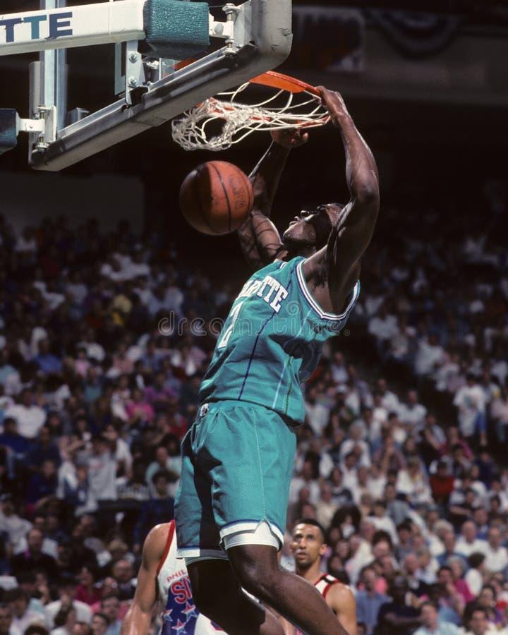 Larry Johnson. Charlotte Hornets forward Larry Johnson. (Image taken from color slide stock photography