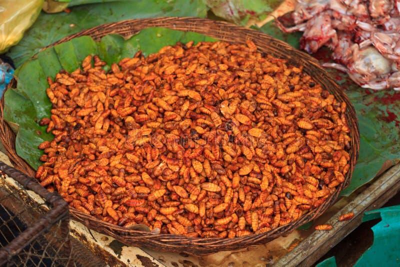Larvas de la comida fritas, preparado un bocado fotos de archivo