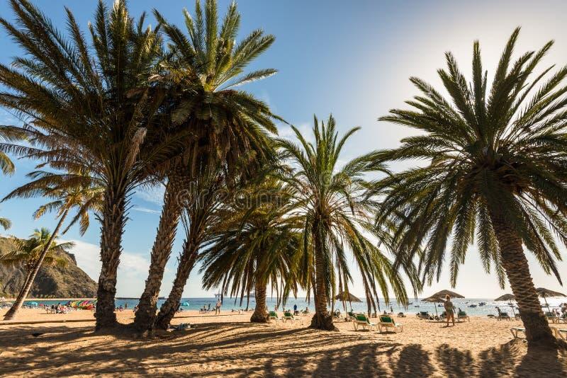 Lasów teresitas wyrzucać na brzeg, Tenerife, wyspy kanaryjska, Hiszpania fotografia stock