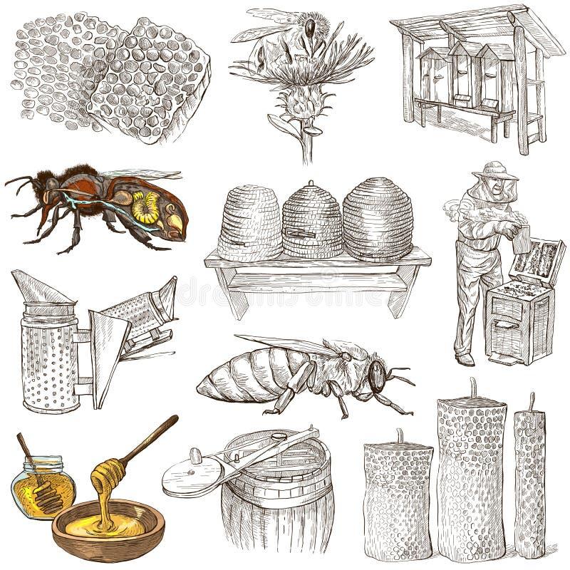 Las abejas, apicultura y miel - dé los ejemplos exhaustos ilustración del vector