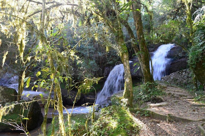 Las aguas de la cascada imagen de archivo