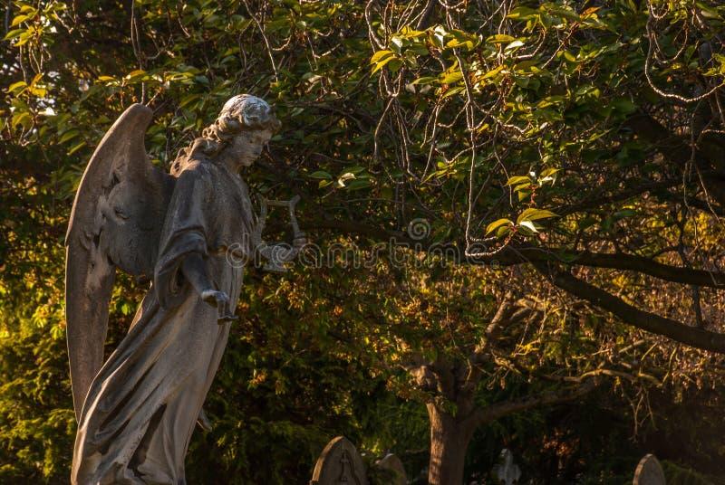 Las alas de un ángel de una estatua antigua fotos de archivo libres de regalías
