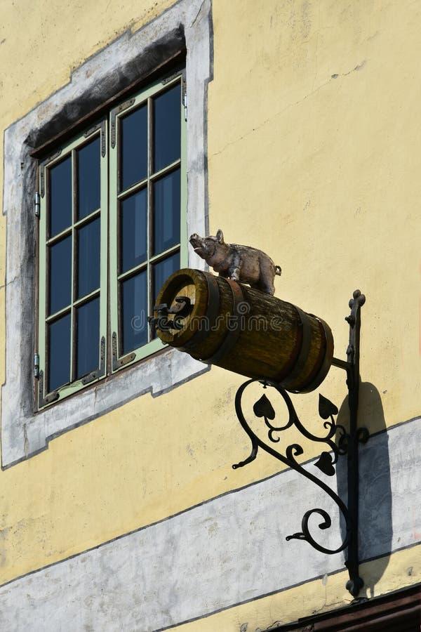 Las alegrías, un cerdo le colocan en recepciones de una taza de cerveza foto de archivo libre de regalías