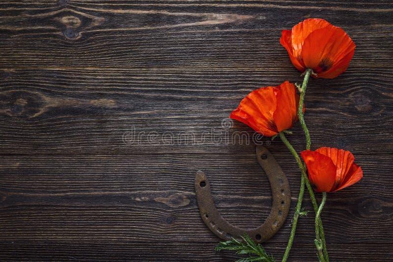 Las amapolas rojas florecen con la herradura oxidada en fondo de madera oscuro foto de archivo