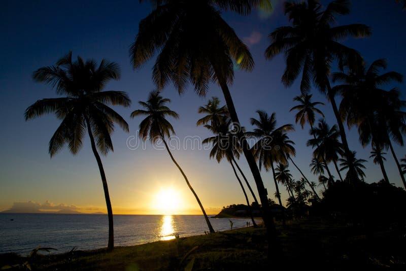 Las Antillas, el Caribe, Antigua, St pueden, Morris Bay, playa en la puesta del sol foto de archivo libre de regalías