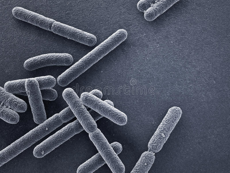 Las bacterias se cierran para arriba stock de ilustración