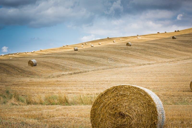 Las balas de heno del trigo descansan sobre las laderas en Toscana imagenes de archivo