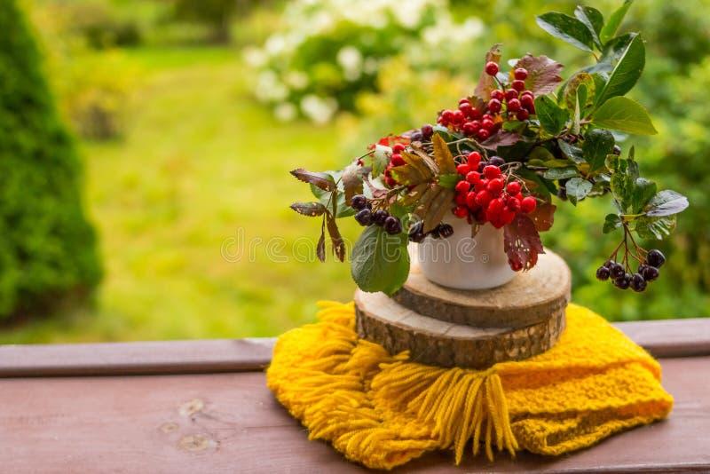 Las bayas del otoño, las bayas negras del chokeberry, la baya de serbal y la bufanda amarilla en un jardín viejo bench Todavía co imágenes de archivo libres de regalías