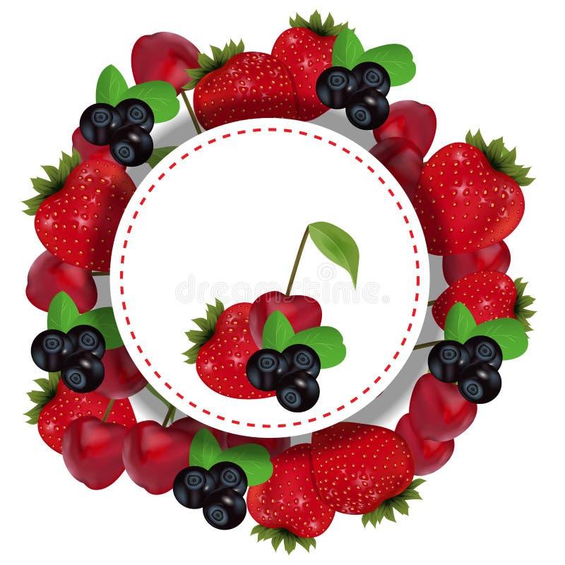 Las bayas etiquetan con la fresa, la cereza y el arándano Vector ilustración del vector